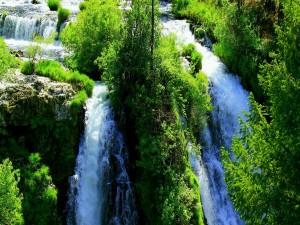 Cascada entre rocas y verdes árboles
