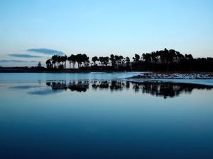 Hielo en la orilla del lago