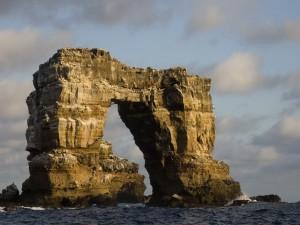 Gaviotas sobre una gran roca marina