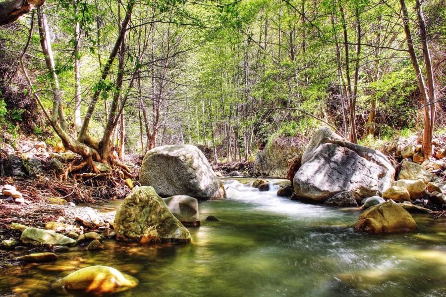 Grandes piedras en un río