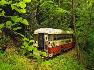 Autobús abandonado en un bosque
