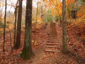 Hojas otoñales sobre las escaleras