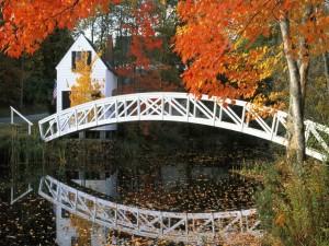 Casa junto a un puente blanco