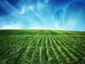 Planetas junto a un campo verde