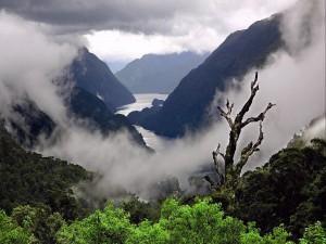 Niebla en un paisaje montañoso