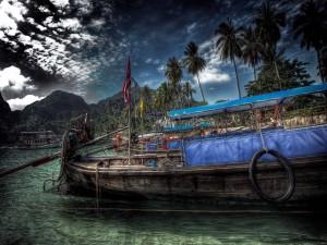 Barcos anclados junto a las palmeras