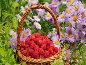 Cesta con frambuesas junto a unas flores