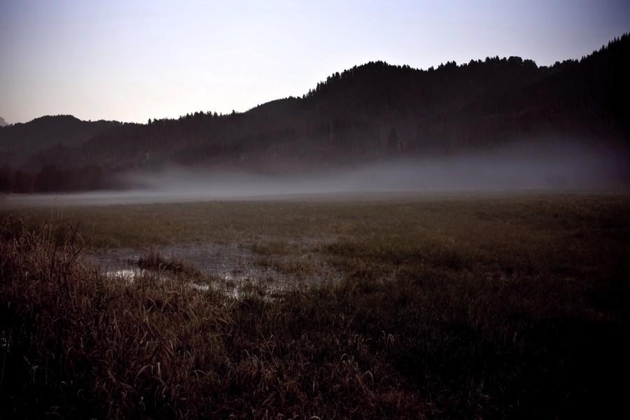 Niebla bajo las montañas