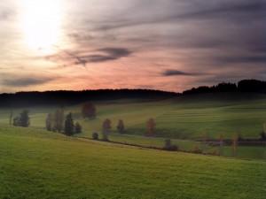 Amanecer en un campo verde