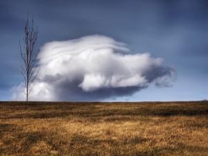 Gran nube sobre el campo