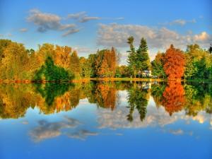 Árboles otoñales reflejados en el lago