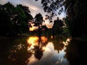 Amanecer reflejado en el lago de un parque