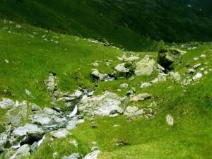 Piedras y agua en la ladera de una montaña