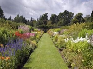Camino verde en un jardín