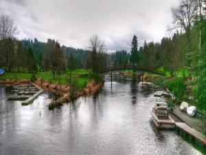 Barca en el río