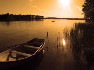 Barca anclada al amanecer