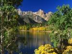 Vistas al lago y las montañas