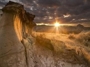 Brillante sol iluminando el paisaje