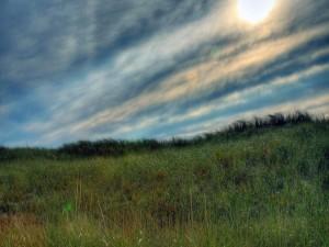 Bonito cielo sobre la hierba
