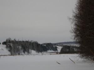 Lugar cubierto de nieve