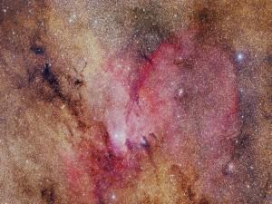 Hermosas estrellas en el espacio