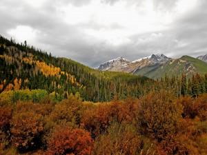 Cielo nuboso en otoño