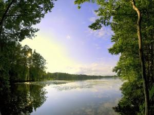Bonito día en el lago