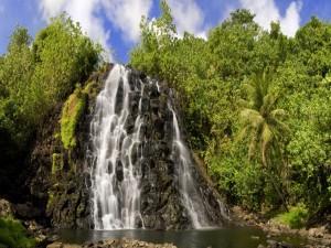 Cascada en un lugar tropical