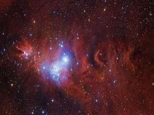Estrellas luciendo en una nebulosa
