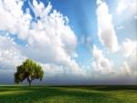 Nubes sobre un prado verde