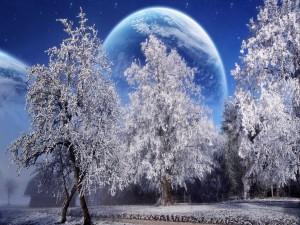 Planeta tras unos árboles invernales