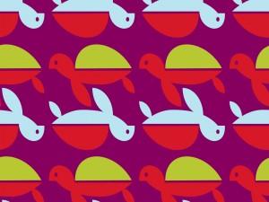 Pequeñas tortugas de colores