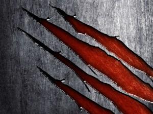 Arañazos en el metal