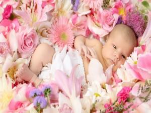Bebé tumbado entre flores
