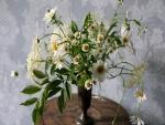 Margaritas silvestres en un florero