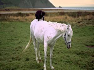 Cabritilla a lomos de un caballo