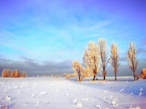 Bonito cielo sobre un paraje nevado
