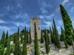 Torre entre los cipreses