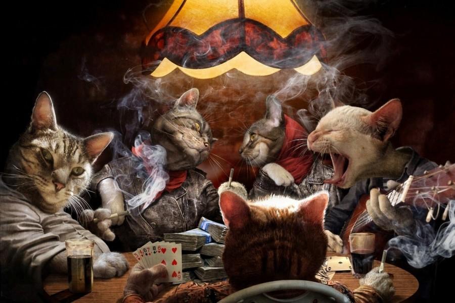 Gatos jugando al poker