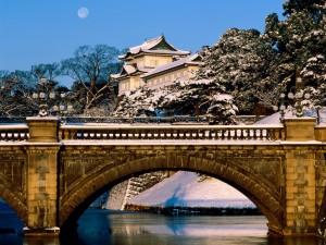 Nieve sobre el Palacio Imperial de Tokio y el puente Nijubashi