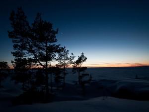 Amanece en un paisaje cubierto de nieve