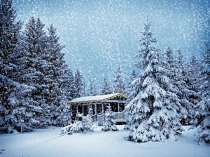 Tormenta de nieve en Navidad