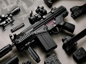 Arma con todos sus componentes