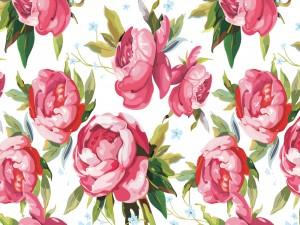 Imagen con peonías color rosa