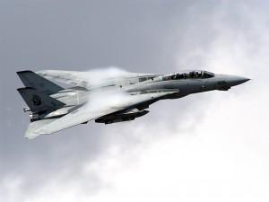 F-14 Tomcat en el aire