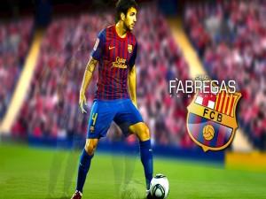 Cesc Fábregas jugador del F.C. Barcelona