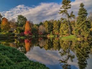 Admirando la naturaleza en otoño