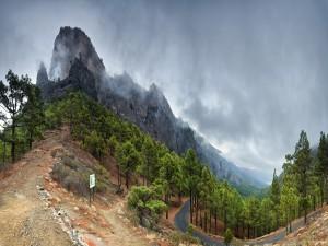 Carretera entres bosques y montañas