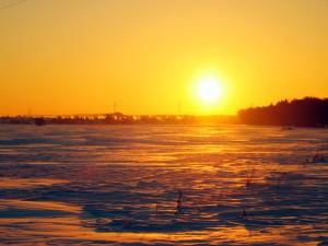 Sol brillando en invierno
