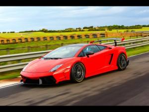 Pilotando un Lamborghini Gallardo